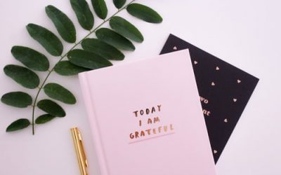 THE IMPORTANCE OF CULTIVATING GRATITUDE